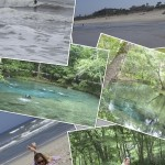 Jacksonville_and_Ginnie_Springs